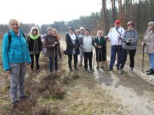 Więcej o: Rajd nordic walking ścieżkami lasów tomaszowskich