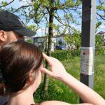 Dziewczynai chłopak stoją przed słupem, na którym przyklejona jest kartka papieru. Wpatrują się w nią. Jest słoneczna pogoda.