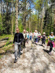Las. Drogą wśród drzew maszeruje kilkanaście osób, wspierając się na kijkach do nordic walkingu. Świeci słońce.