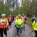 Kilkanascie osób maszeruje z kijkami do nordic walkingu. Idą przez las. Jest ładna, wiosenna pogoda.