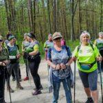 Grupa osób maszeruje przez las. W rękach mają kijki do nordic walkingu.